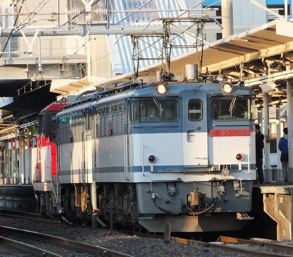 Dscf7355