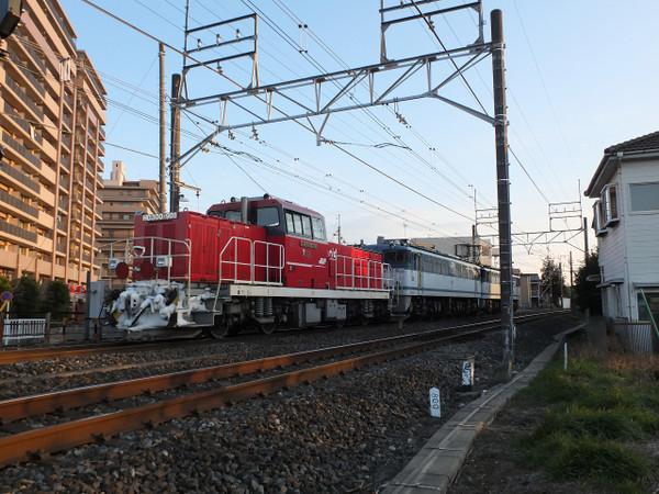 Dscf7381