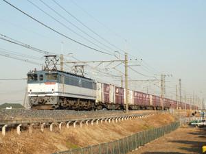 Dscf7669