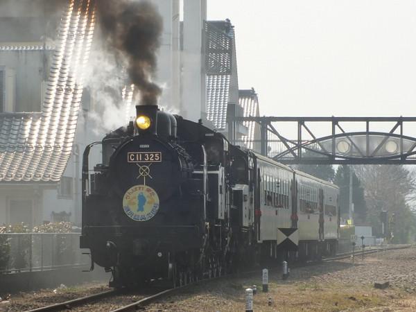 Dscf7785