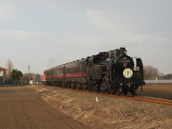 Dscf7954