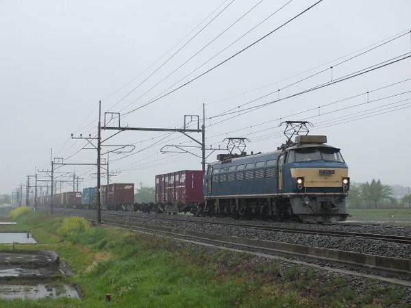 Dscf8267