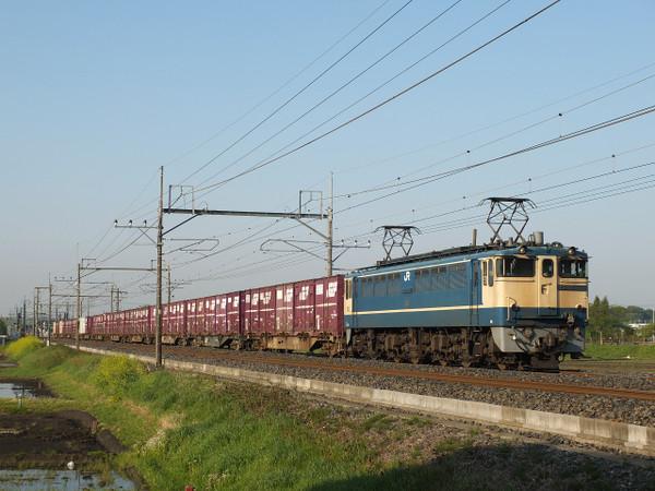 Dscf8268
