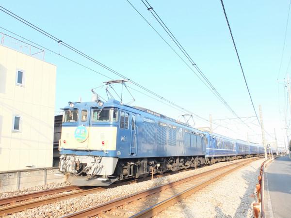 Dscf1510