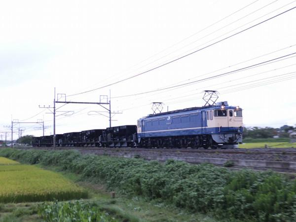 Dscf6094